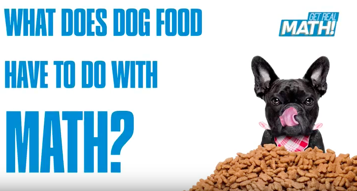What does dog food have to do with math? Thumbnail